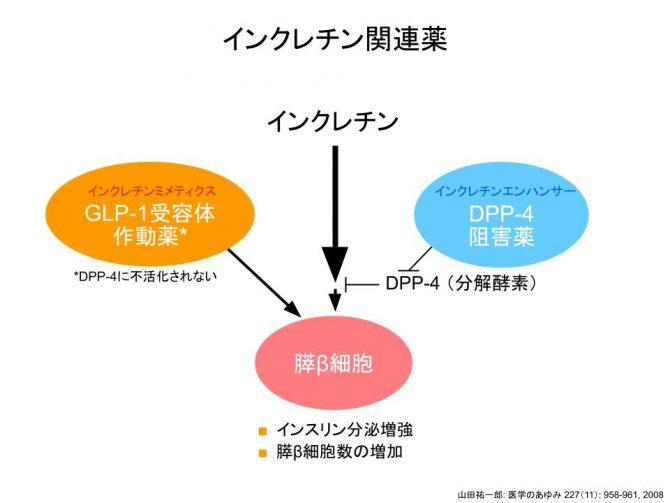 インクレチン関連薬(DPP-4阻害薬とGLP-1受容体作動薬)
