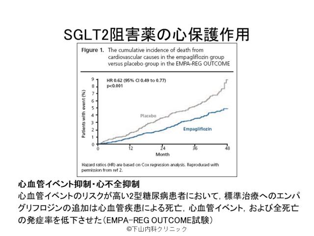 SGLT2阻害薬の心保護作用
