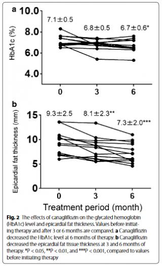 カナグリフロジンはEATを減少させる